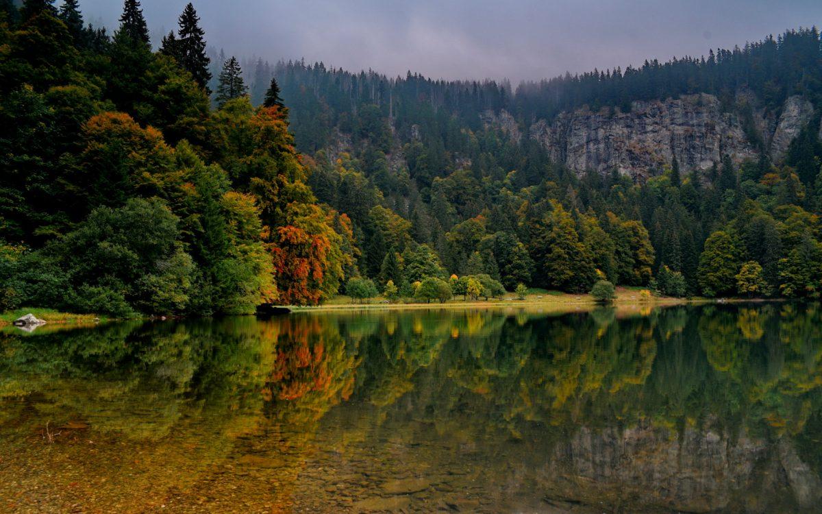 Mitten im Hochschwarzwald